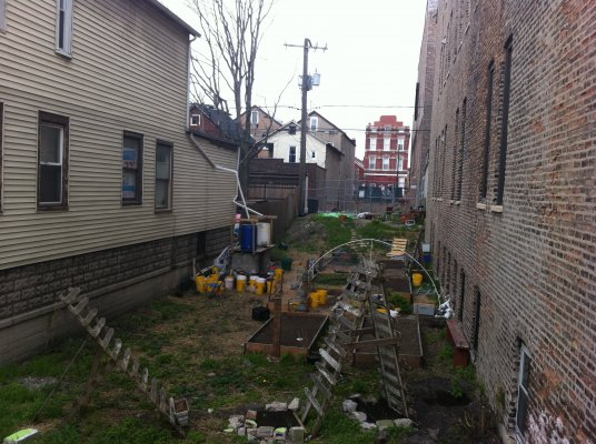 Pilsen is a predominantly Latino community, with closely packed houses and very little green space. Resident gardeners are working to turn all available open lots into thriving gardens.