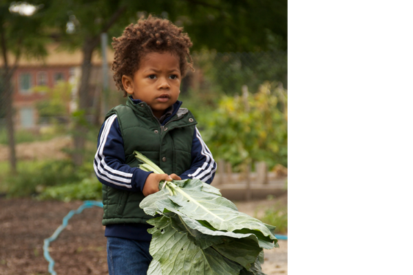 Bronzeville leaders and educators are creating and improving green neighborhood spaces where children of all ages can learn about nature.