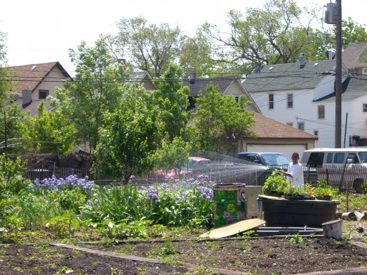 Since 2008, over 20 organizations have collaborated on the annual 10th Ward Green Summit. It showcases the community's significant efforts around affordable green housing, open space, and gardens—like the one pictured here.