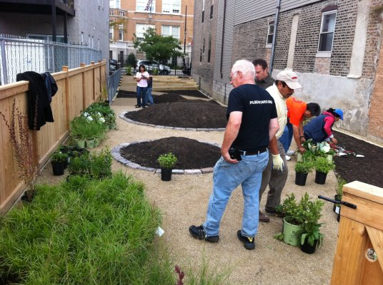 Local gardeners helped plant the garden, together with community residents. It includes milkweed, which is a crucial food source for Monarch butterflies.