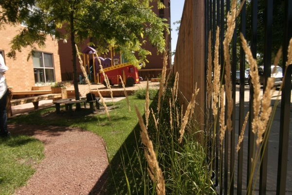 """These efforts are part of other community projects that connect youth to nature. At two day cares run by <a href=""""http://www.cnh.org/"""">Centers for New Horizons</a>, Tsadakeeyah Ben Emmanuel helped to create unstructured, nature-based play experiences for toddlers using native plants and re-purposed materials."""