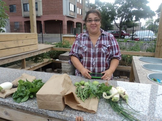 Instead of locking the garden up, lead cultivator Lupe Garcia held a series of weekly harvesting classes, free and open to the public, to teach community members how and when to pick produce.